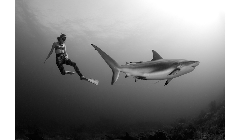 "Colombian national freediving record holder Sofia Uribe Gomez charmed by a Caribbean reef shark. Photo: <a href=""http://liabarrettphotography.com/\"" target=_blank>Lia Barrett</a>"
