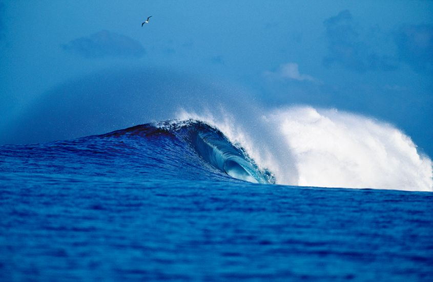 "1995. Moorea Bay. Perfect wave. Photo: <a href=""http://www.artbrewer.com\"" target=_blank>Art Brewer</a>"