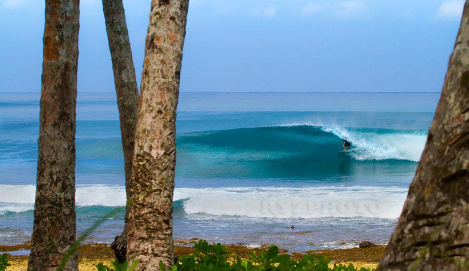 """Tropicool. Photo: <a href=""""http://www.franciscotsantos.wix.com/portfolio"""">Francisco Santos</a>"""