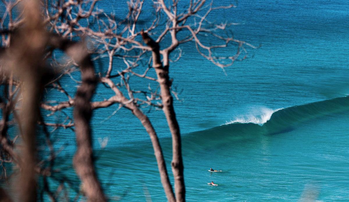 photo de surf 17699