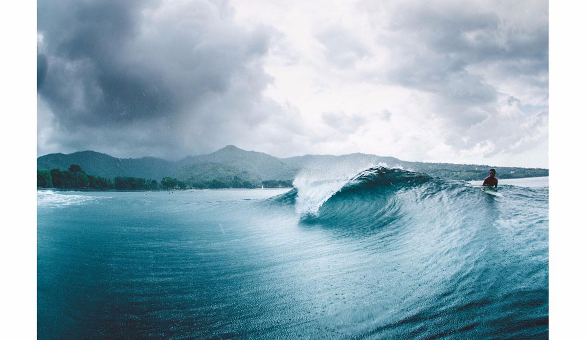 """Rain barrel. Photo:<a href=""""http://www.haydenoneillphoto.com/"""">Hayden O'Neill</a>"""
