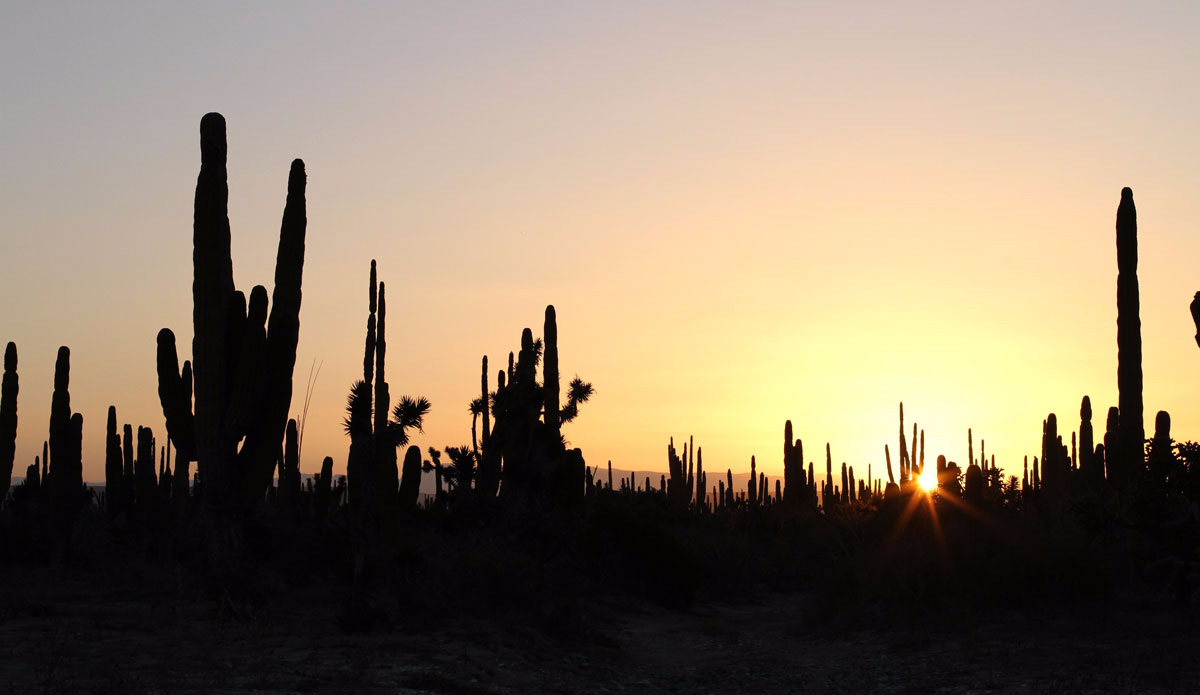 "Sundown over Baja. Photo:<a href=""http://www.tylerbrundage.com/"" target=""_blank"">Tyler Brundage</a>"