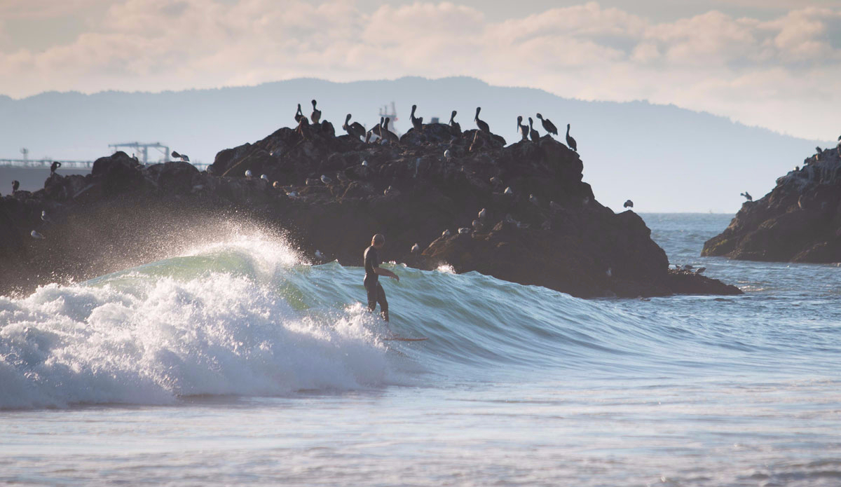 """A well known spot not known to break this far in. Photo: <a href=\""""https://instagram.com/snapsbyaragon/\"""">Alex Aragon</a>"""