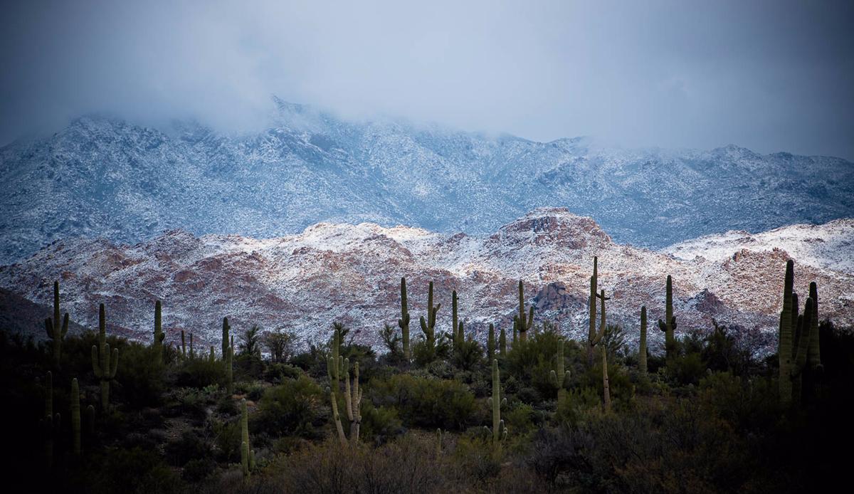 "Snowy desert, Arizona, 2014. Photo: <a href=\""http://instagram.com/deanblottogray\"">Dean Blotto Gray</a>"