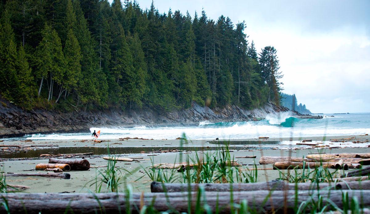 photo de surf 17701