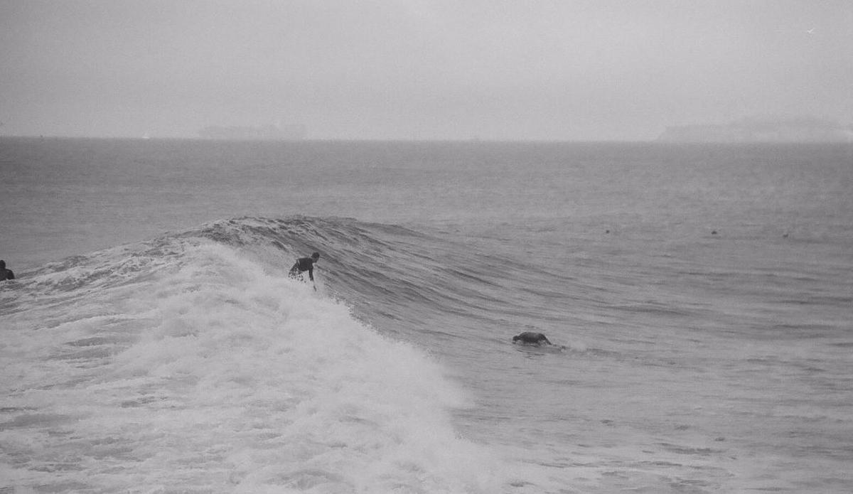 photo surf argentique