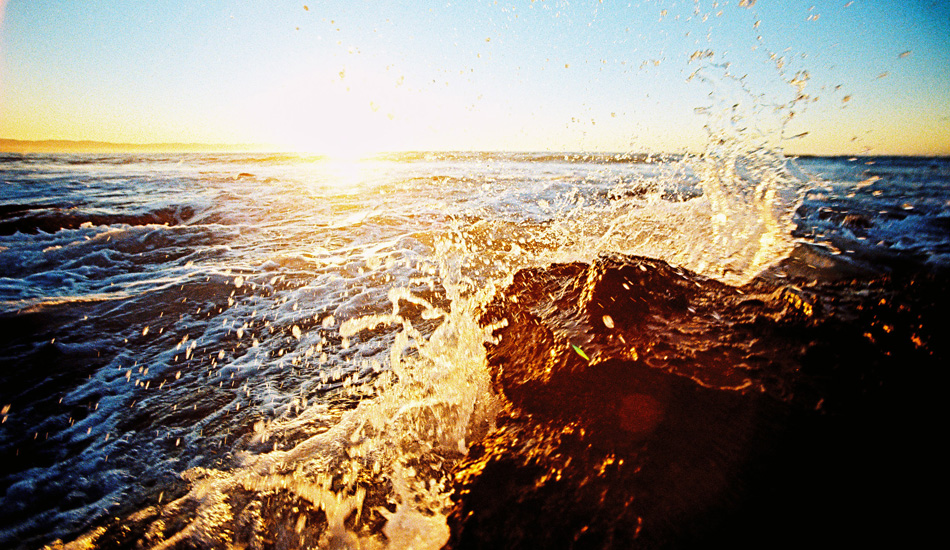 Just get in the ocean. Photo: Jared Aufrichtig