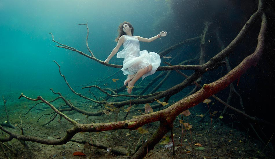 "We learned that freedivers make really great underwater tree fairies. Photo: <a href=""http://liabarrettphotography.com/\"" target=_blank>Lia Barrett</a>"