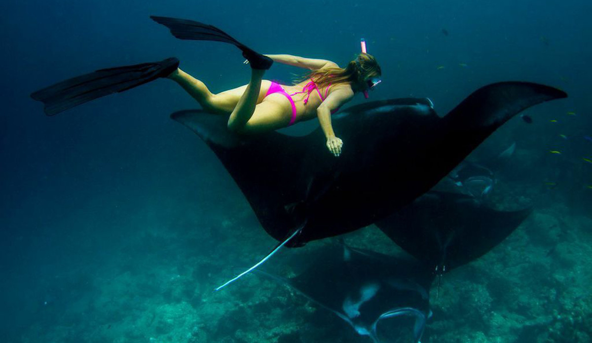 """I visited the Ba'a Atoll biosphere reserve and, in between beach clean-ups, swam with these majestic mantas. Photo: <a href=http://www.vivantvie.com/\"""">Sarah Lee</a>"""