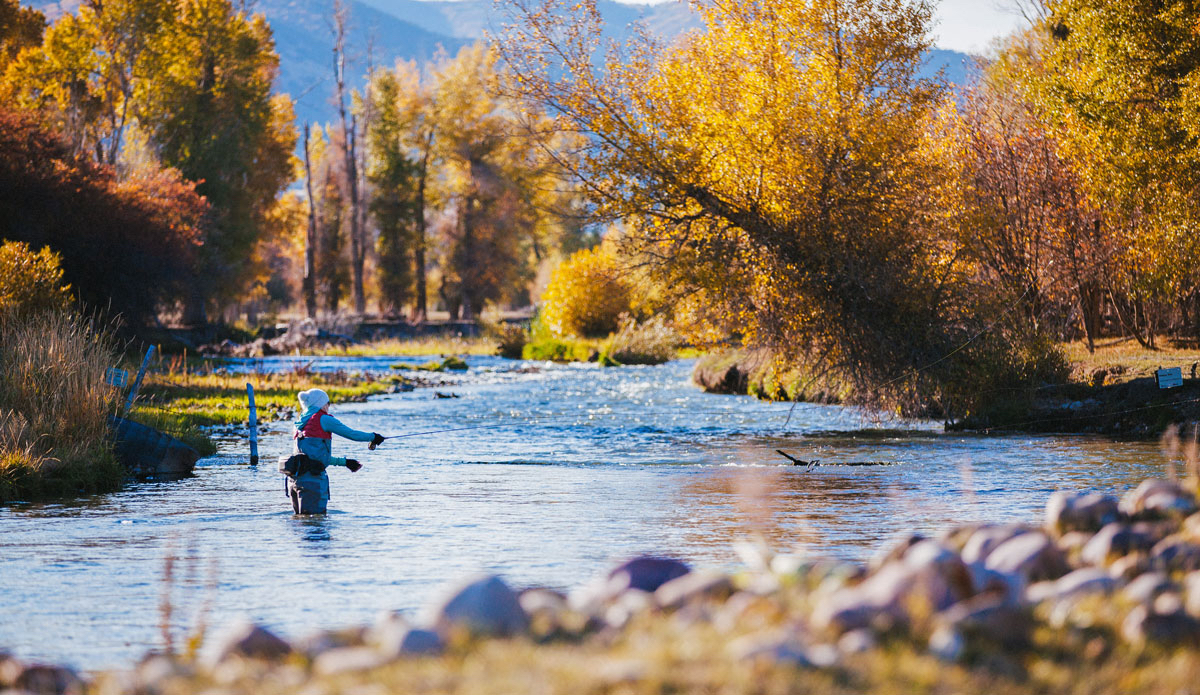 Utah is so much more than snow covered ski resorts the for Fly fishing utah
