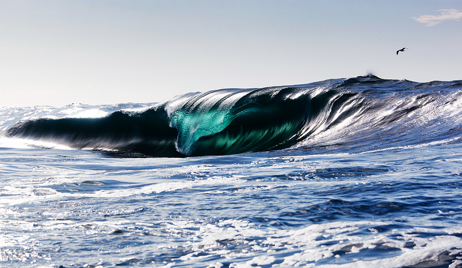 Scary Wave
