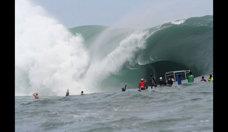 The rogues and freaks. Photo: ASP