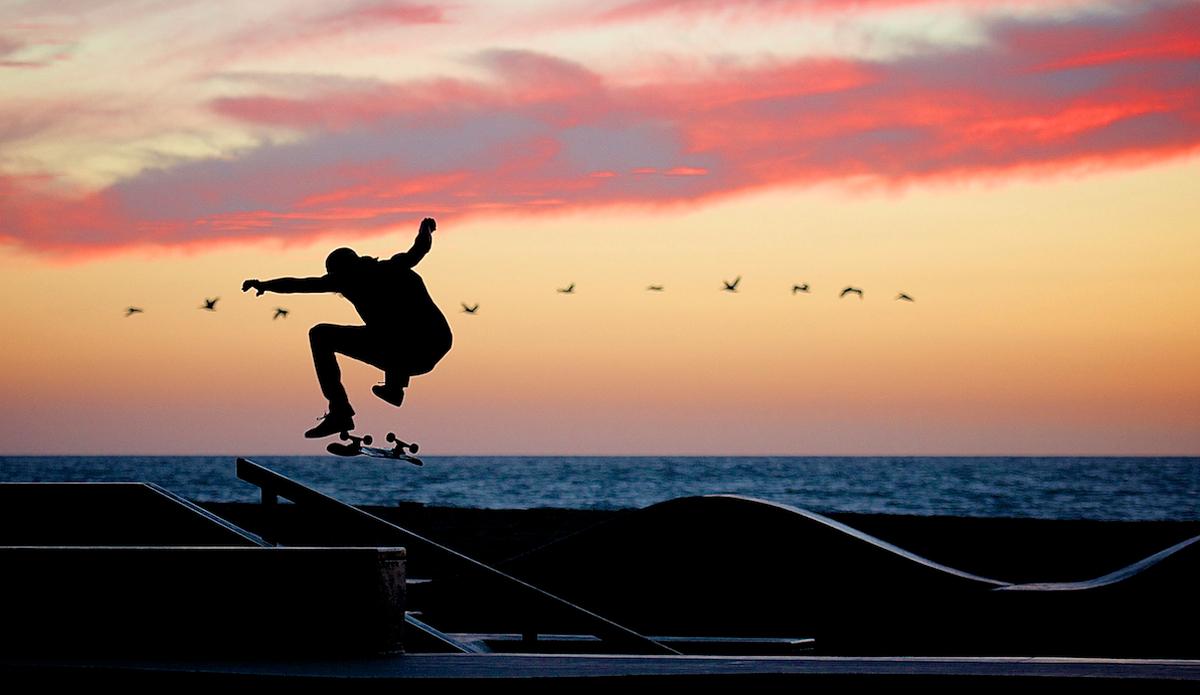 """Birdman in Venice. Photo: <a href=\""""http://www.brianaverillphotography.com\"""">Brian Averill</a>"""