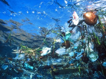 Ocean Pollution Trash
