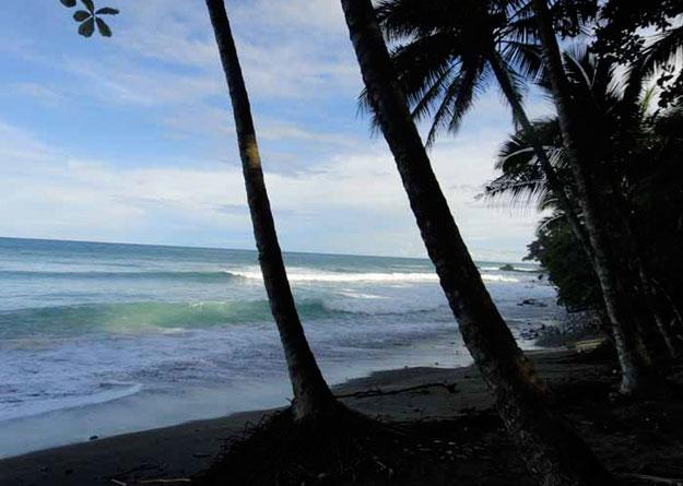 surfing somewhere near here...
