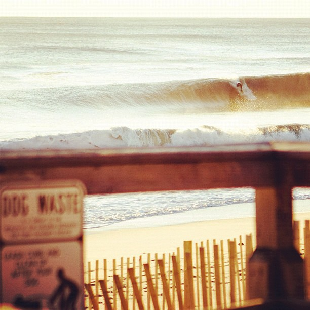 Morning light in New Jersey. Photo: Smolowe