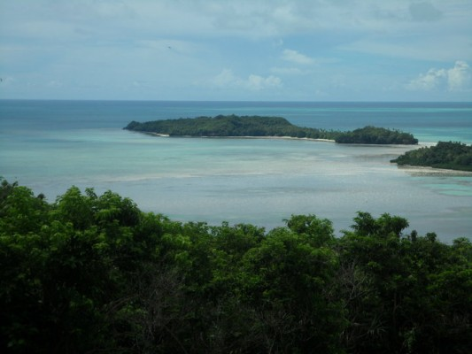 Overlooking coral and forest in the Republic of Palau.