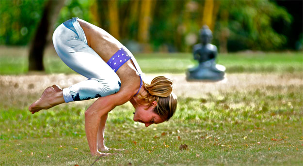 The crane pose in yoga, also known as the Bakasana, is a compact arm balancing posture that helps in strengthening the arms as well as the abdominal organs.
