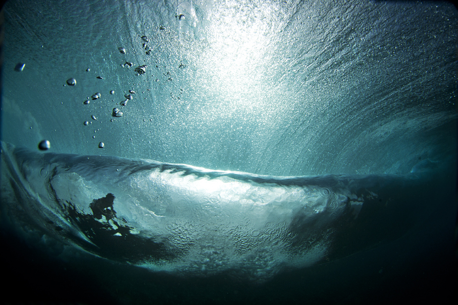 Sedated. Taken beneath the surface at Backdoor. Photo: Brent Beilmann