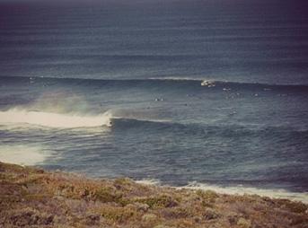Three Bears, West australia, west oz, australia, perth, surfing, shark encounter, shark story, sharks
