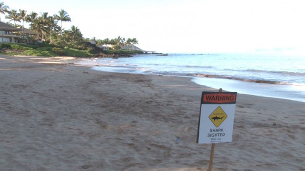 """A """"Shark Sighted"""" sign is posted on the Makena Beach after Lutteropp is attacked offshore."""