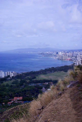 The molasses spill occured only a couple miles from the favorited Waikiki. Photo: Shutterstock/April Edwards