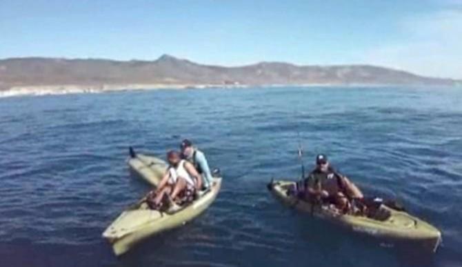 3 Shark Attacks In 2 D...
