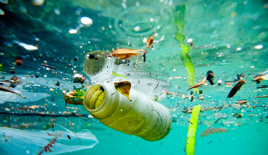 Ocean Pollution Pictures 12