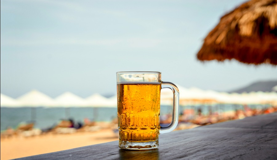 Get Paid To Travel And Drink Beer All Summer The Inertia