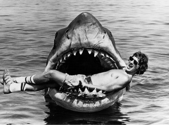 """""""Fuck your couch, shark! I'm insured!"""""""
