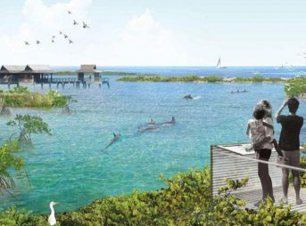An artist's rendition of the sea sanctuary, slated to be completed by 2020. Image: National Aquarium