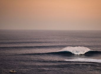 Shane Grace Jaws Hawaii