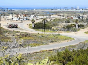 A massive development proposal for Banning Ranch was nixed by the California Coastal Commission on Wednesday, but it may not be dead. Photo: KQED