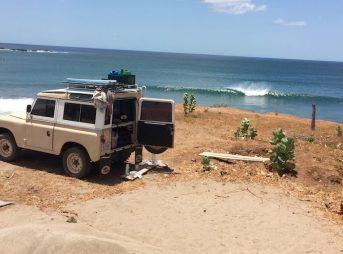 Bessie Enjoys the view in Playa Gigante, Nicaragua. Photo: Wyatt Fowler