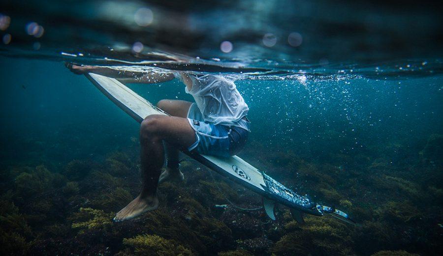 Below the surface. Photo: Maria Fernanda