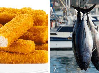 "Fish sticks and tuna. Varying degrees of ""good."""
