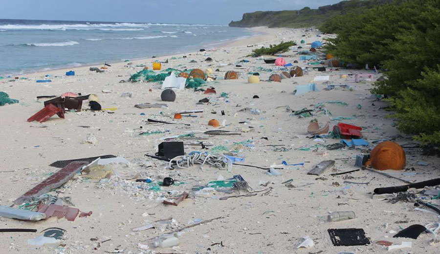 Henderson Island in the South Pacific in uninhabited... and it's COVERED in plastic. Photo: Lavers