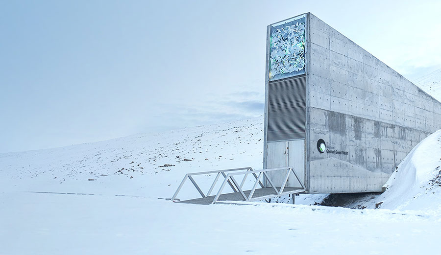 The entrance to the Svalbard Global Seed Vault flooded after record temperatures and heavy rainfall. Photo: Crop Trust