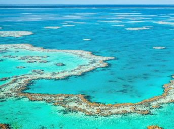The Great Barrier Reef is reeling under a combination of bleaching, over-fishing and land clearing.