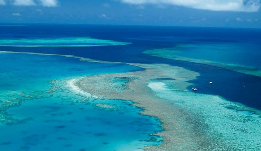 Experts say the current plan to save the Great Barrier Reef are is no longer achievable