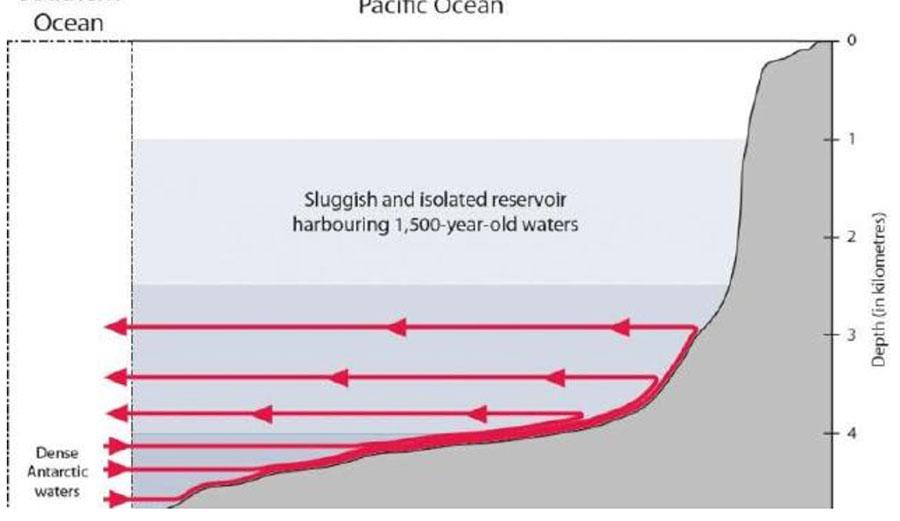 Schematic illustration of water currents. Credit: Fabien Roquet and Casimir de LavergneImage: Supplied
