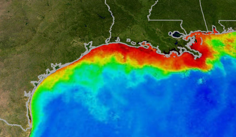 See that dead zone? Yeah, it's not going anywhere no matter what we do. Image: NASA