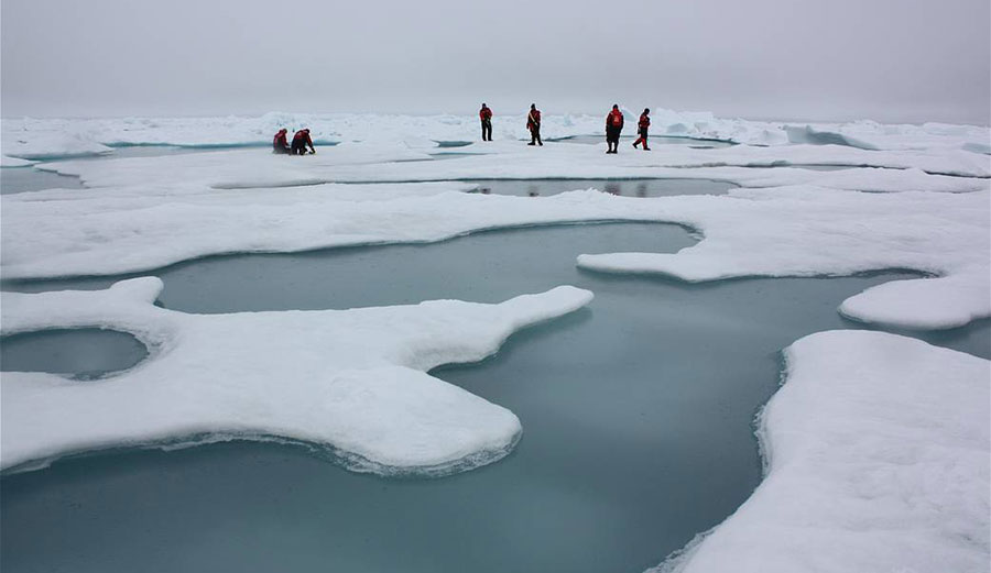 Scientists on Arctic sea ice in the Chukchi Sea, surrounded by melt ponds, July 4, 2010.