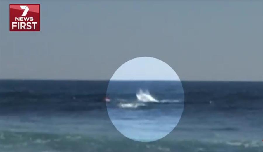 תיעוד מצמרר: כריש תוקף גולש; הליגה ביטלה את התחרות במרגרט ריוור