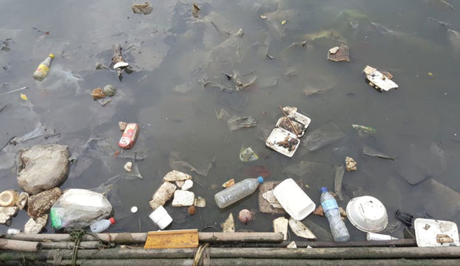 The most dangerous element from discarded plastic waste is microplastics. Image: Shutterstock