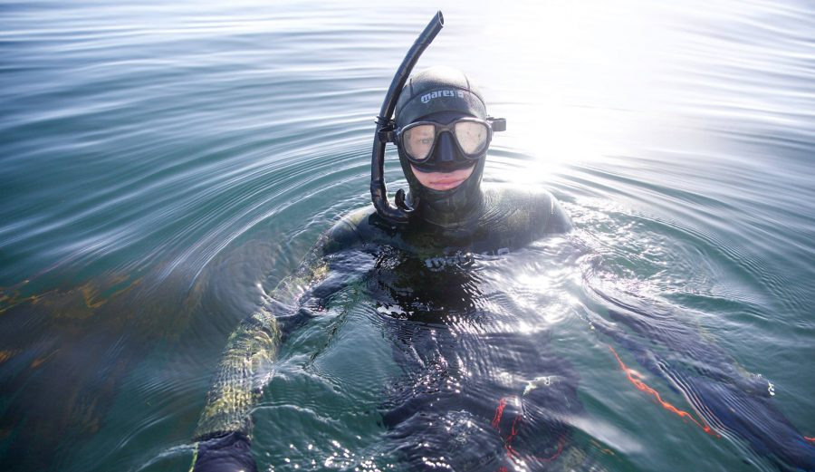 Spearfishing Kyle Thiermann Diving