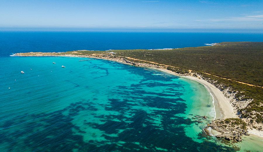shark spotting drone australia