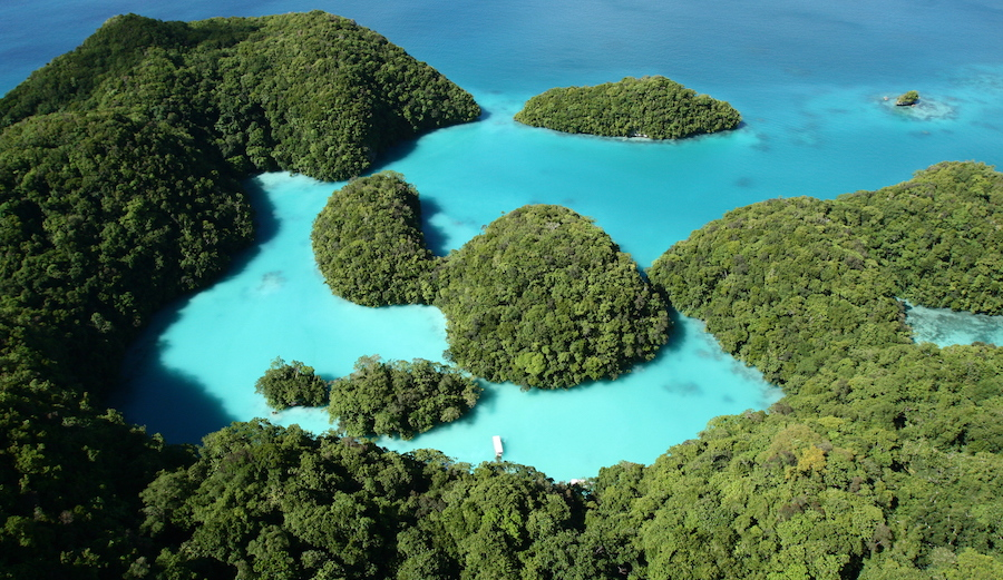 Using the Wrong Sunscreen in Palau Will Now Carry up to a $1000 Fine Per Offense