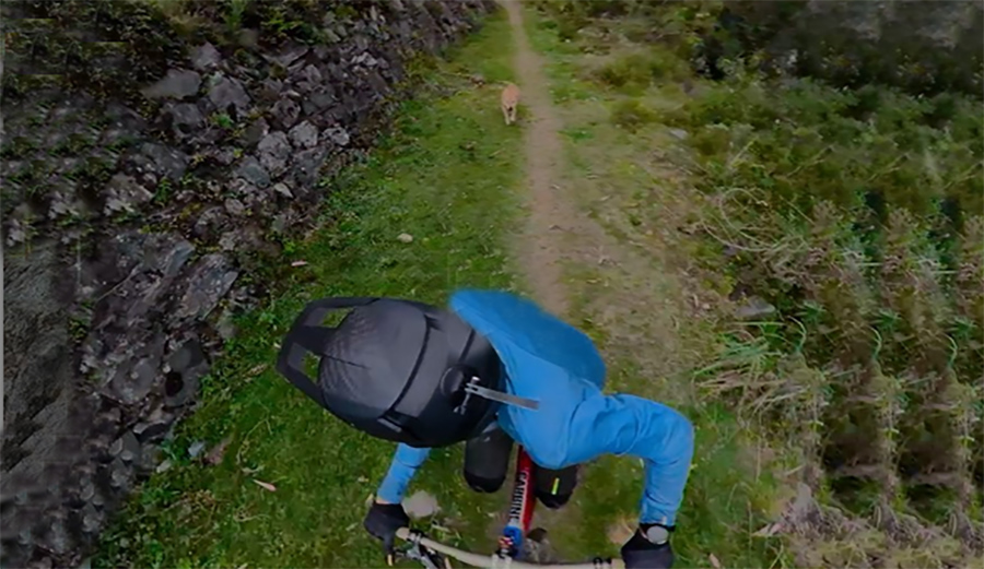 Mountain Biker Kilian Bron Left His Camera On as He Tried to Outrun an Angry Dog