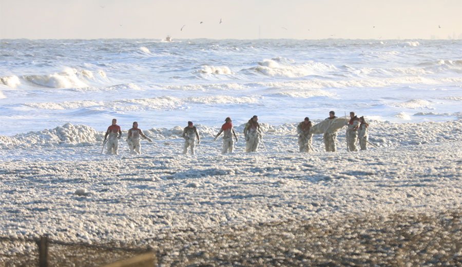 Netherlands Surfing Tragedy: Was Sea Foam Really to Blame for the Deaths of 5 People?